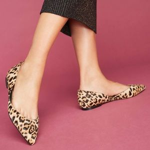 ✨ Sam Edelman Rodney Leopard d'Orsay Flat ✨